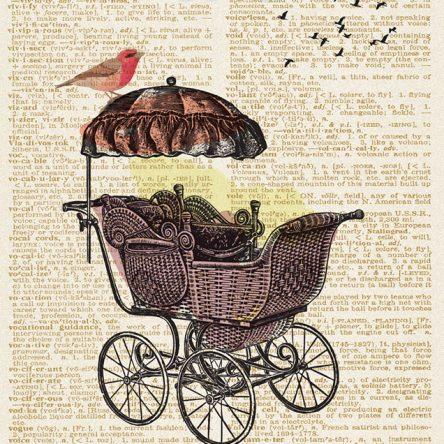 Dječja kolica i ptice